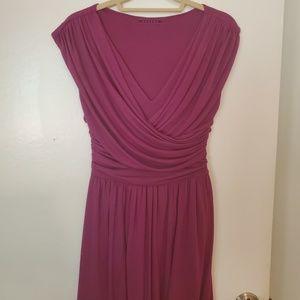 Anthropologie Velvet brand purple dress